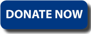 donate-button-logo-blue-rectangle